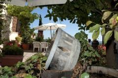 Ferienwohnung Toskana Weingut | Gartendetail