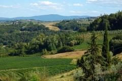 Ferienwohnung Toskana Weingut | Panoramaaussicht
