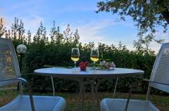 Toskana B&B - Weingut Poggio Belvedere -San Gimignano
