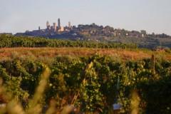 Ferienwohnung Toskana - Blick auf San Gimignano