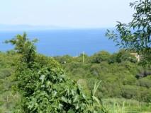 Ferienhaus Elba am Meer