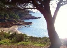 Ferienhaus Elba - Strandansicht Madonna delle Grazie (4)