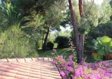 Ferienhaus Elba direkt am Meer - Villa Lilia