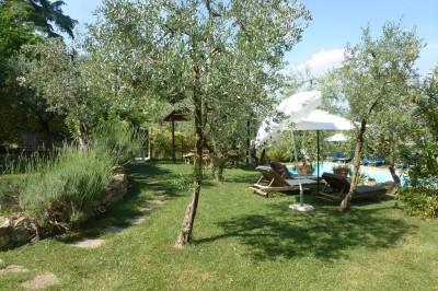 Ferienwohnung Toskana Weingut | Garten- und Poolbereich