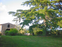 Ferienwohnung Toskana Pool | Landhaus Le Rose | Gartendetail