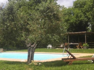 Ferienwohnung Weingut Toskana | Pool Casa dell'Arte
