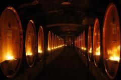 Gourmetreise Toskana - Antike Weinkellereien