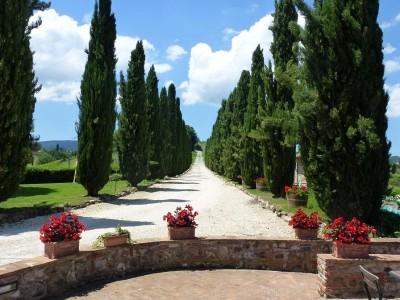 Toskana Bed and Breakfast - Borgo Toscano