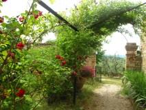 B&B Villa Toskana - Villa Antica - Rosengarten