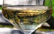 Toskana Ferien - Weintour Toscana