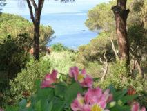 Elba Ferienhaus am Meer | Meeresblick von der oberen Sonnenterrasse