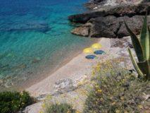 Ferienhaus Elba am Meer | Strand Stecchi 2