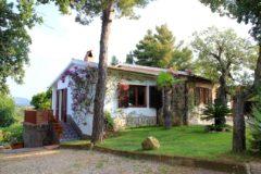 Villa Marina | Ferienhaus Elba mit Pool | Gartenbereich