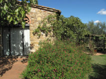 Ferienhaus Toscana Weingut | Ferienhäuschen Tulipano