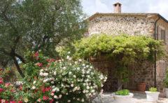 ferienhaus toscana pool saturnia (42)