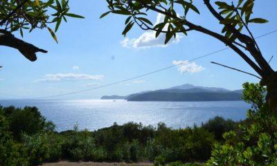 Ferienwohnung Elba am Meer | Ausblick Ferienwohnung Cielo