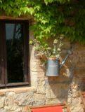 Ferienwohnung Weingut Toscana | Montersiccio