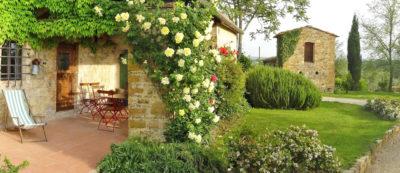 Verde | Ferienwohnung Toscana Weingut