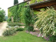 Ferienwohnung Weingut Toscana | Montebello